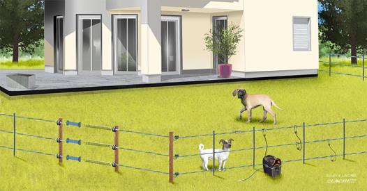 cloture electrique pour petit chien