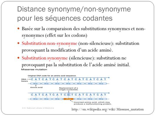 comparer synonyme