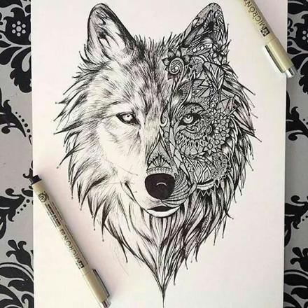 loup blanc et noir dessin