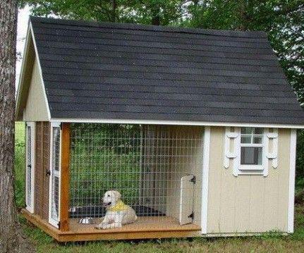 niche pour gros chien