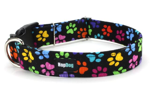 collier fantaisie pour chien
