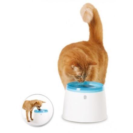 fontaine à chat pas cher