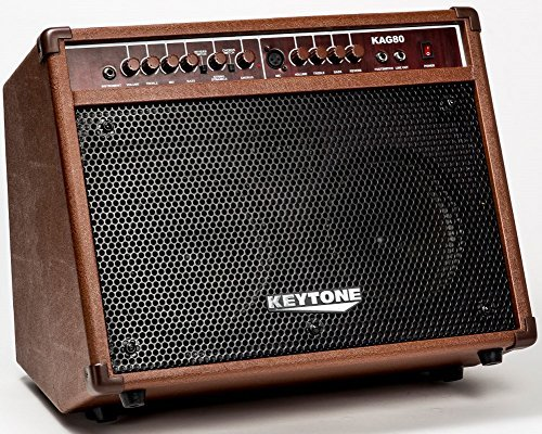 meilleur ampli electro acoustique