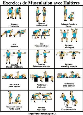musculation avec haltere
