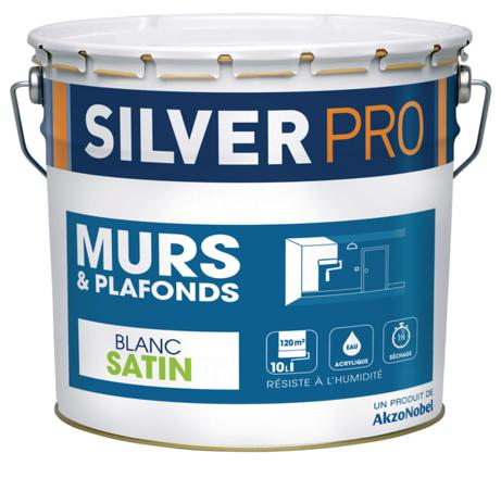 peinture silver pro
