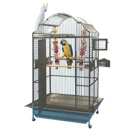 perroquet cage