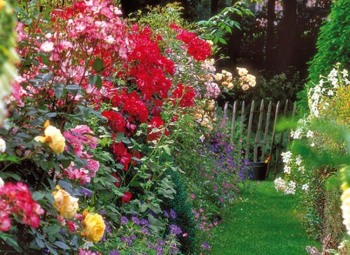 plantation au jardin