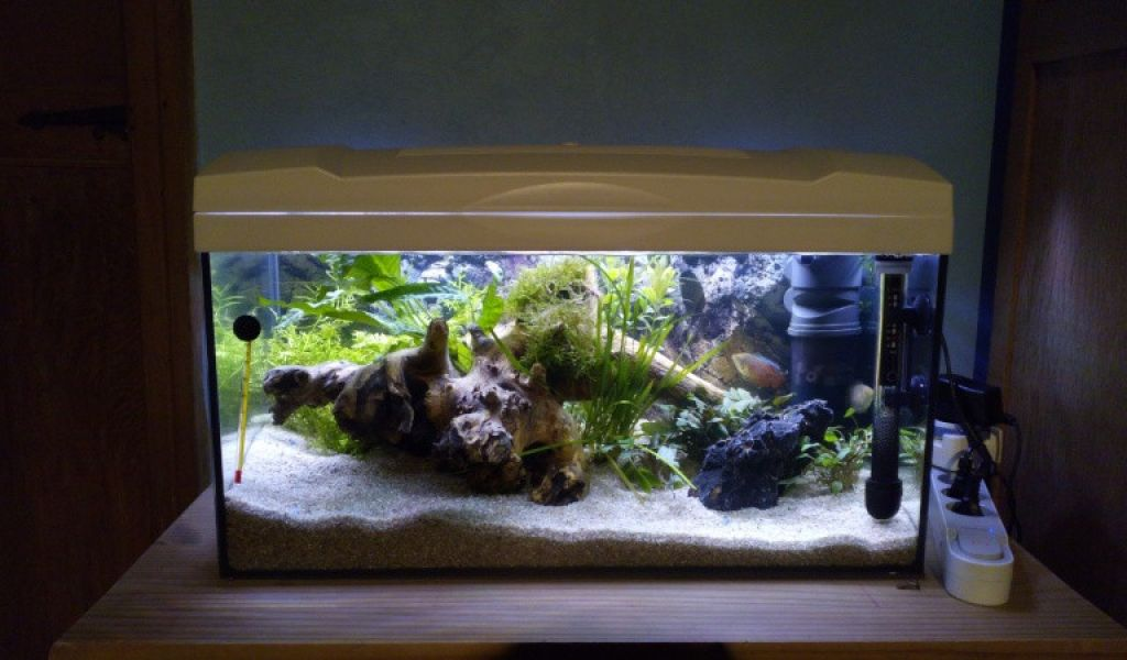 quel filtre pour aquarium 60l